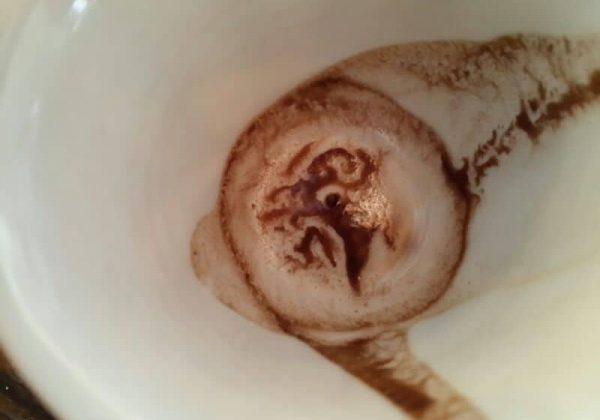 למה הפסקתי ללכת לשרה הקוראת בקפה?
